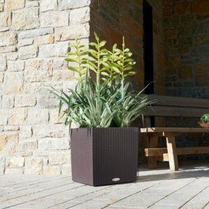 Pot Lechuza Cube Cottage L40 H40 cm mocca