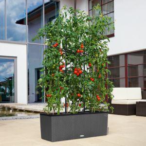 Jardinière Lechuza Trio Cottage L100 H34 cm granit + Treillis. PLANTES ET JARDIN – Jardinerie en ligne