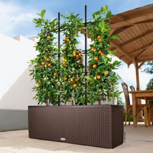 Jardinière Lechuza Trio Cottage L100 H34 cm mocca + Treillis. PLANTES ET JARDIN – Jardinerie en ligne