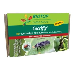 Coccifly 80 larves anti-pucerons arbustes Biotop