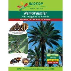 Néma-Palmier 50 millions contre ravageurs du palmier Biotop
