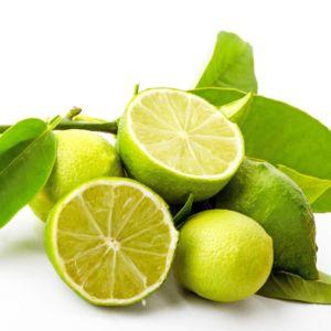 Citronnier des Antilles – Agrume Pot de 5 litres