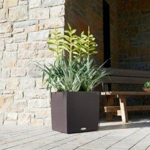 Pot Lechuza Cube Cottage L50 H50 cm mocca