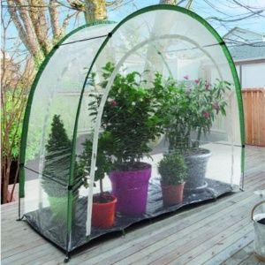 Serre de jardin d'hivernage Maxigreen 3.30 m² Nortène