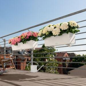 Jardinière Lechuza Balconera Trend L80 H19 cm blanc PLANTES ET JARDIN – Jardinerie en ligne