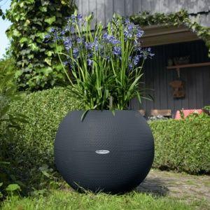 Pot rond Lechuza Puro Color Ø50 H19 cm gris résine PLANTES ET JARDIN – Jardinerie en ligne