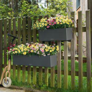 Jardinière Lechuza Balconera Trend L80 H19 cm gris + Support. PLANTES ET JARDIN – Jardinerie en ligne