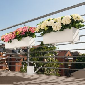 Jardinière Lechuza Balconera Trend L80 H19 cm blanc + Support. PLANTES ET JARDIN – Jardinerie en ligne