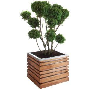Bac à fleurs bois ligne Z L60 H50 cm