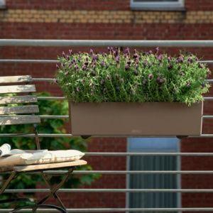 Jardinière Lechuza Balconera Trend L80 H19 cm muscade. PLANTES ET JARDIN – Jardinerie en ligne