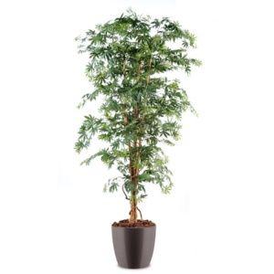 Aralia semi-artificiel grandes feuilles, H180cm, avec pot elho gris