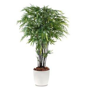 Bambou à cannes noires H210cm semi-artificiel pot Elho blanc