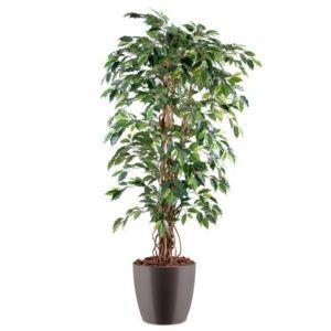 Ficus lianes grandes feuilles H150cm semi-artificiel pot elho gris