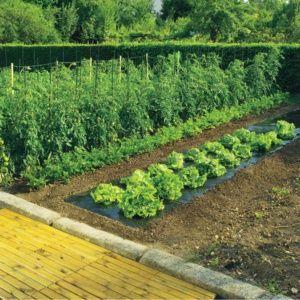 Film paillage terrafilm bio 1,4 X 5M Nortène Plantes et Jardins Jardinerie en ligne