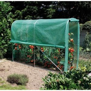 Serre tunnel New Tomato – 3m² hors tout – Intermas