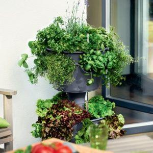 Ensemble 2 jardinières Cascada gris Lechuza + Kit d'extension. PLANTES ET JARDIN – Jardinerie en ligne