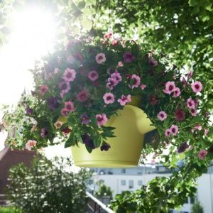Pot Lechuza Cascadino Color pistache + Kit de suspension. PLANTES ET JARDIN – Jardinerie en ligne