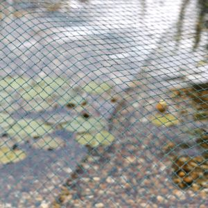Filet de bassin anti-feuilles 4x8 m AquaNet Oase