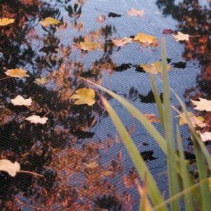 Filet de bassin anti-feuilles 6×10 m AquaNet Oase