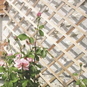 Treillis extensible TRELLIWOOD bois naturel 18×6  1x2m – Nortène