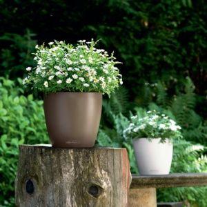 Pot Lechuza Classico Color Ø35 H33 cm muscade. PLANTES ET JARDIN – Jardinerie en ligne