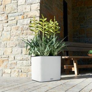 Pot Lechuza Cube Color L35 H33 cm blanc