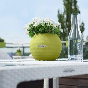 Pot Lechuza Puro Color L20 H16 cm citron vert