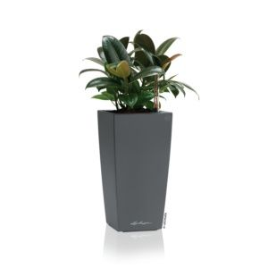 Pot Lechuza Maxi Cubi L14 H26 cm gris métallisé