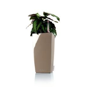 Pot Lechuza Maxi Cubi L14 H26 cm taupe
