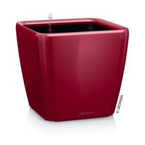 Pot Lechuza Quadro Premium L35 H33 cm rouge