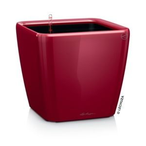 Pot Lechuza Quadro Premium L43 H40 cm rouge