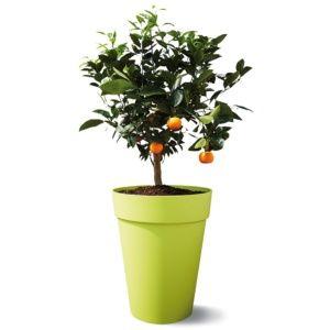 Pot Elho Loft Urban Ø35 H45 cm citron vert