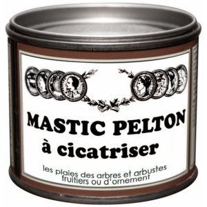 Mastic Pelton à cicatriser 400 G