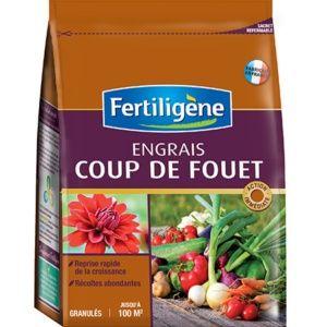 Engrais Coup de Fouet 2 KG Fertiligène