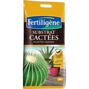 Substrat Cactées 6L Fertiligène