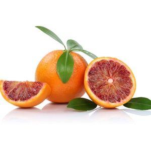 Oranger variété sanguine – Pot de 5 litres – PLANTES-ET-JARDINS