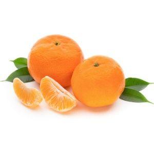 Mandarinier – Agrume Pot de 5 litres – PLANTES-ET-JARDINS
