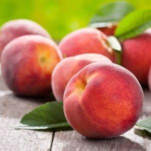 Pêcher de balcon 'Peach Me Red'  – Pot de 2 litres – PLANTES ET JARDINS