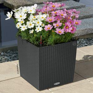 Pot Lechuza Cube Cottage L30 H30 cm granit