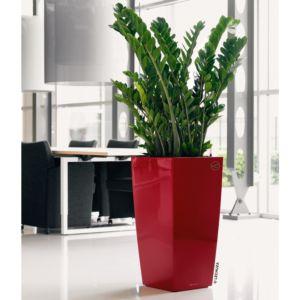 Pot Lechuza Cubico Premium L40 H75 cm rouge laqué