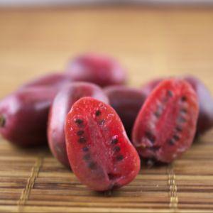 Kiwaï ou Kiwi arguta Ken's red Femelle – En pot de 3 litres