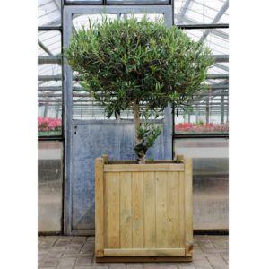 Bac à fleurs bois traité L60 H65 cm Vendôme
