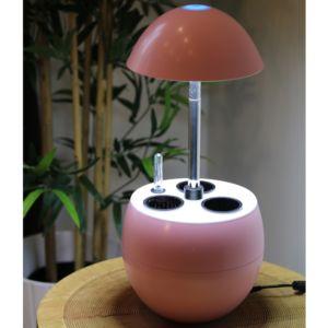 Potager d'intérieur 2L Nelia + Kit de démarrage Kitchen Gardening rose PLANTES-ET-JARDINS – Jardinerie en ligne