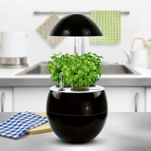 Potager d'intérieur 2L Nelia + Kit de démarrage Kitchen Gardening noir