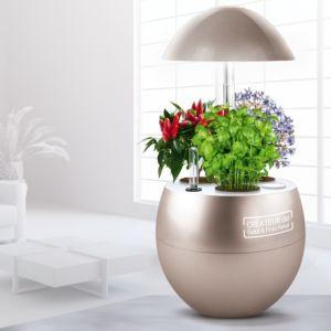 Potager d'intérieur 2L Nelia + Kit de démarrage Kitchen Gardening comète