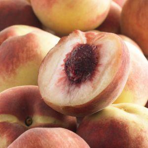 Pecher Reine des vergers - Fruitier Georges Delbard