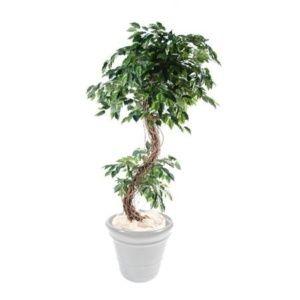 Ficus S semi-artificiel 1m80