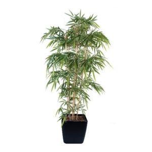 Bambou New 7 chaumes 2m10 (tronc naturel) + cache pot Lechuza