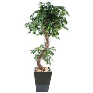 Ficus benjamina 'S', 1m80 (tronc naturel, feuillage artificiel) + pot