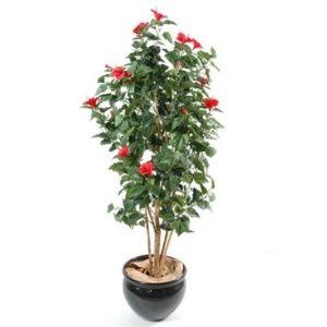Hibiscus rouge, 150 cm (tronc naturel, feuillage artificiel) + pot classique (Hibiscus )